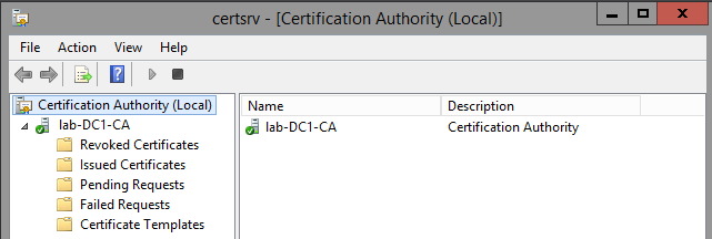 Creating a microsoft certificate authority template for ssl right click certificate templates and click new certificate template to issue yadclub Gallery